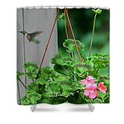 Hovering Shower Curtain