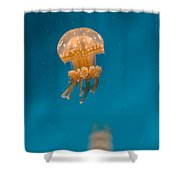 Hovering Spotted Jelly 1 Shower Curtain