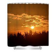 How Majestic Is Your Name II Shower Curtain