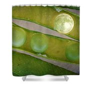 How The Moon Was Born Shower Curtain
