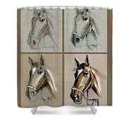 How To Draw A Horse Portrait Shower Curtain
