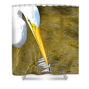 How To Fish Shower Curtain