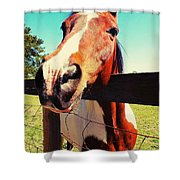 Howdy Do Shower Curtain