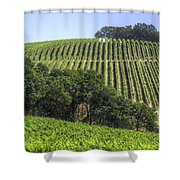 Howell Mountain Vineyards Shower Curtain