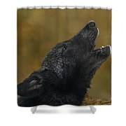 Howling Gray Wolf Pup Endangered Species Wildlife Rescue Shower Curtain
