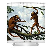 Howling Monkey Shower Curtain
