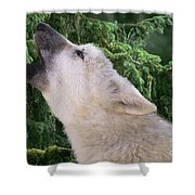 Howlling Arctic Wolf Pup Endangered Species Wildlife Rescue Shower Curtain