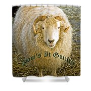 Hows It Going Old English Hunter Green Shower Curtain