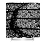 Hula Stump Shower Curtain
