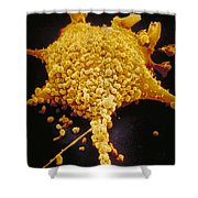 Human Cell Infected With Mycoplasma Shower Curtain by David M. Phillips