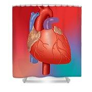 Human Heart Shower Curtain