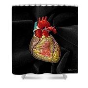 Human Heart On Black Velvet Shower Curtain