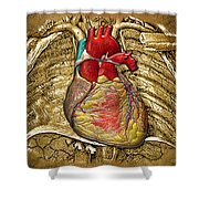 Human Heart Over Vintage Chart Of An Open Chest Cavity Shower Curtain