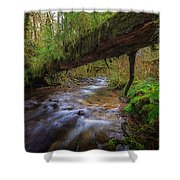 Humbug Creek Shower Curtain by Everet Regal