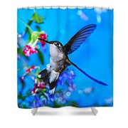 Hummer And Flowers On Acrylic Shower Curtain