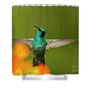 Humming Along Shower Curtain