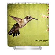 Humming Bird In Flight Shower Curtain