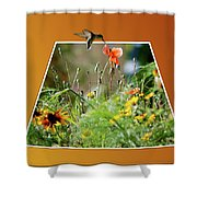Humming Bird Out Of Bounds Shower Curtain
