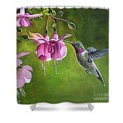 Hummingbird And Fuschia Shower Curtain