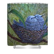 Hummingbird Babies Shower Curtain
