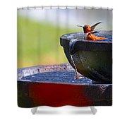 Hummingbird Bath Shower Curtain