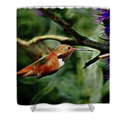 Hummingbird Dreams Digital Art Shower Curtain