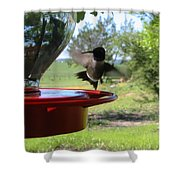 Hummingbird Flying To The Feeder Shower Curtain