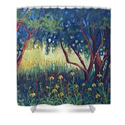 Hummingbird Gardens Shower Curtain