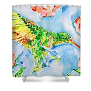 Hummingbird In The Roses Shower Curtain
