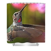 Hummingbird Intensity Shower Curtain
