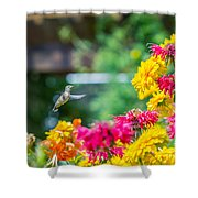 Hummingbird Moment Shower Curtain