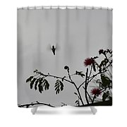 Hummingbird Silhouette I Shower Curtain