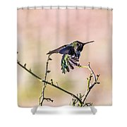 Hummingbird Stretch Shower Curtain