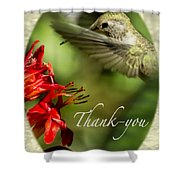 Hummingbird Thanks Shower Curtain