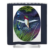 Hummingbird Two Shower Curtain