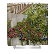 Hummingbirds In Spring Shower Curtain