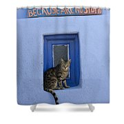 Humorous Cat Sign Shower Curtain