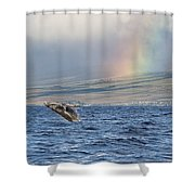 Humpback Whale And Rainbow Shower Curtain
