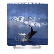 Humpback Whale Breaches In Clearing Fog Shower Curtain