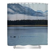 Humpback Whales And Alaskan Scenery Shower Curtain by Camilla Brattemark