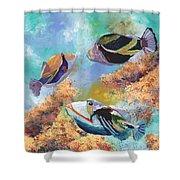 Humuhumu 3 Shower Curtain