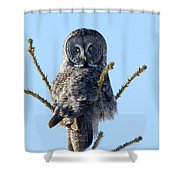 Hundred Mile Stare Shower Curtain