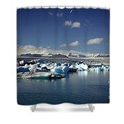 Hundreds Of Icebergs Shower Curtain