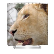 Hungry Shower Curtain