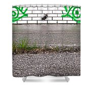 Hungry Steps  Shower Curtain