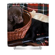 Hunters Puppy Dreams Shower Curtain by Skip Willits