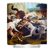 Hunting Dogs Detail Shower Curtain