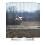 Hunting For Scraps Shower Curtain
