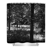 Hunting... Shower Curtain