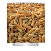 Husked Sweetcorn Shower Curtain